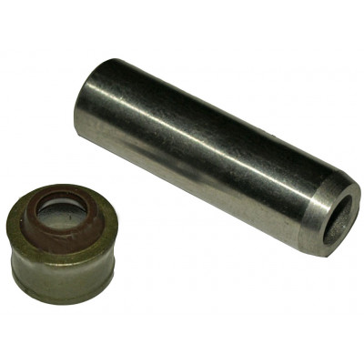 Направляющая клапана + сальник (на 2 клапана) (178F)